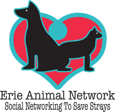Erie Animal Network